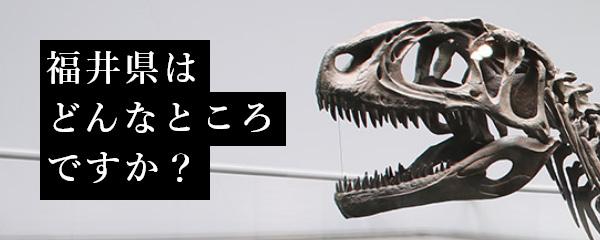 福井県2020