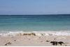 一生に一度は訪れたい。沖縄のディープすぎる島々。