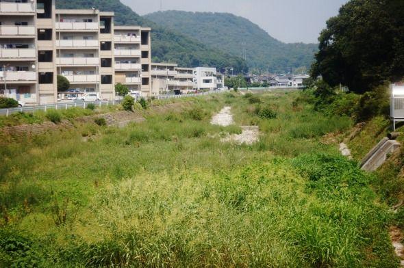 karakawa_sanpo03.jpg