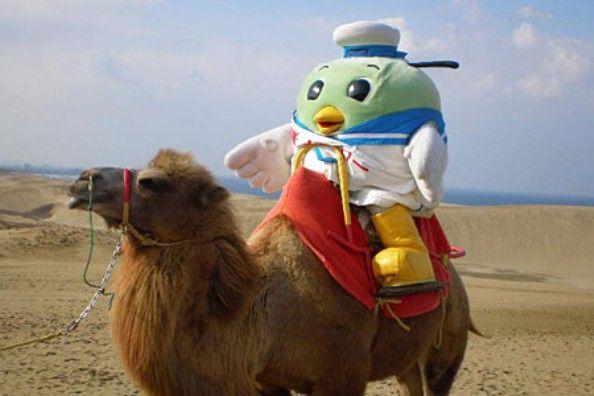 ラクダに乗るトリピー(鳥取県倉吉市の観光案内広場より)