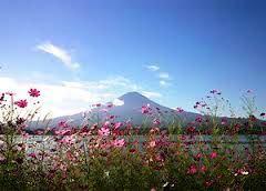 山梨県から見た富士山