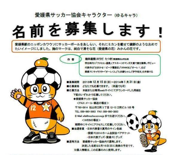 愛媛県サッカー協会ウェブサイトより