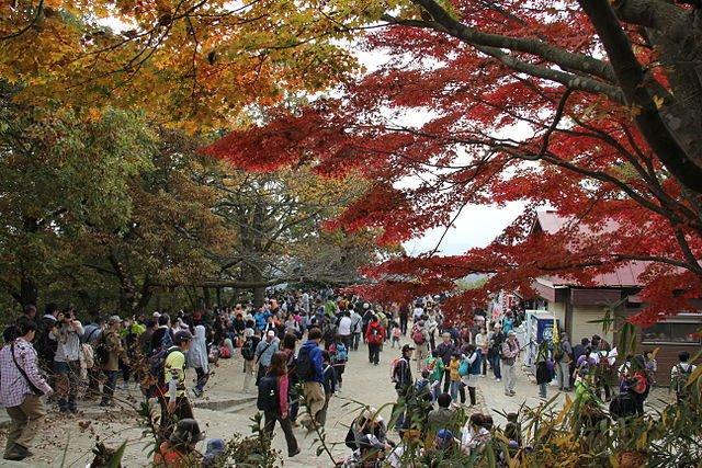 高尾山山頂の広場(Arashiyamaさん撮影、Wikimedia Commonsより)