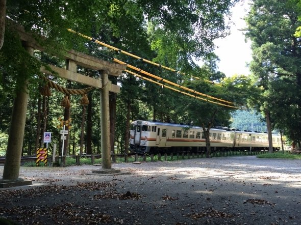 境内を走る電車(T-mercuryさん撮影、Wikimedia Commonsより)