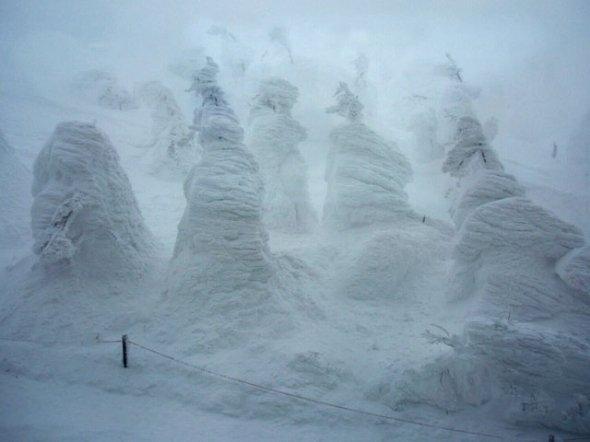 蔵王の樹氷(SEKIUCHIさん撮影、Wikipedia日本語版より)