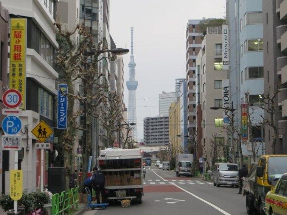 東京スカイツリーがくっきり見える!