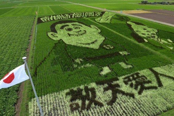 南九州市の田んぼアート(画像提供:農事組合法人「たべた」実行委員会)