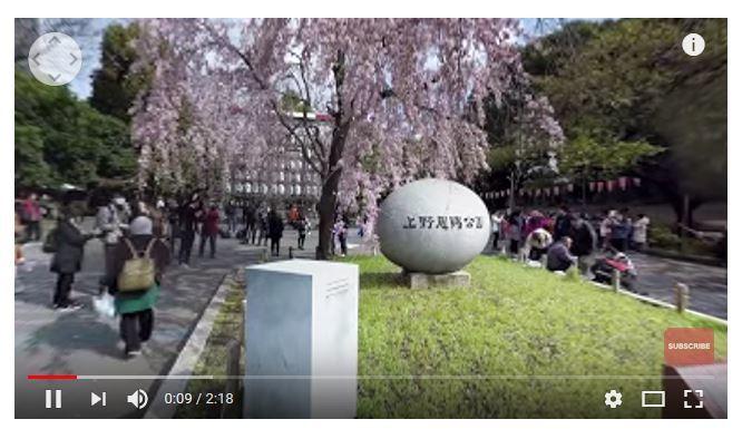 画像はウェザーニューズのホームページより。お花見VRの上野恩賜公園編をキャプチャ