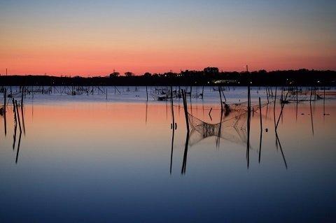 印旛沼のグラデーション
