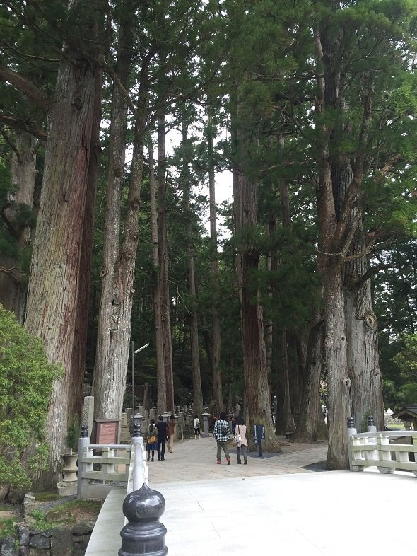 高野山に行くとその荘厳さに圧倒される(画像は奥之院の入り口, 2016年5月記者撮影)