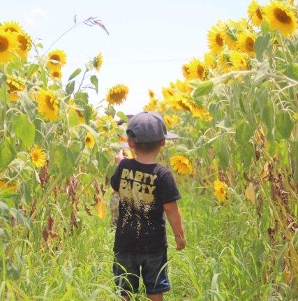 子どもはうれしい夏休み(画像はイメージ)