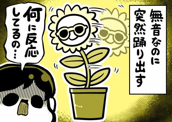 イラスト:森キノコ