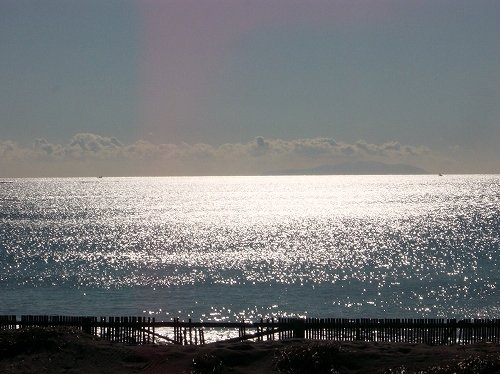 写真は湘南海岸(alonflocさん撮影, Wikimedia Commonsより)