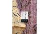 企画展「日本の書―和歌と詩のかたち」