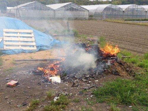 野外焼却の煙が我が家に...(画像はイメージ)