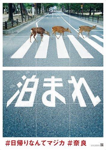 以下画像は奈良市観光協会提供