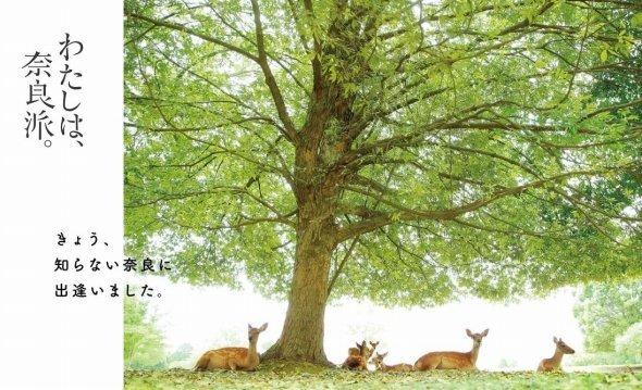 鹿ののんびりとした様子が見る人を和ませる(公式サイトより)