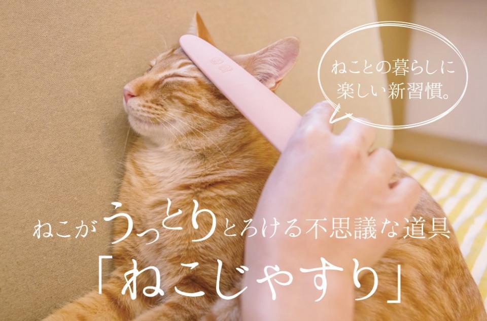 至福の表情に...!(画像はワタオカ公式サイトより)