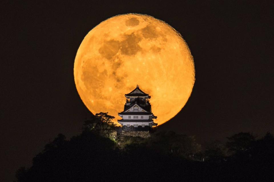 城との距離は6.5キロだという。2019年4月20日撮影 小林淳さん(@atsushi_k_photo)提供