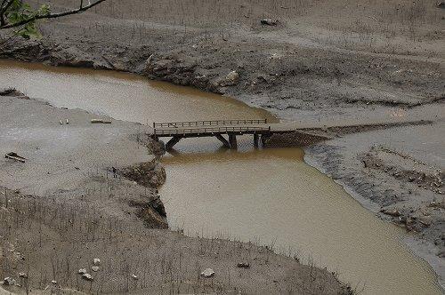 ダムの中から橋が出現(画像提供:新城市役所秘書人事課)