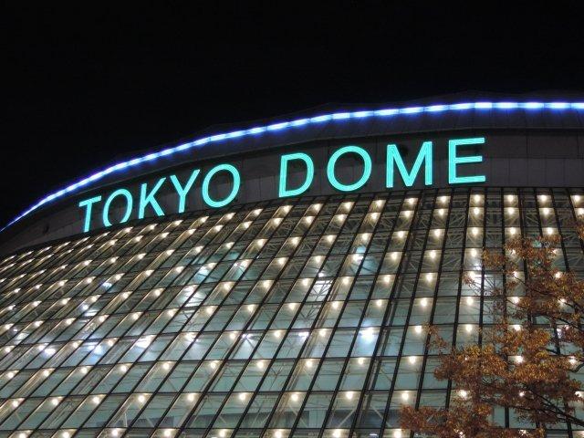 東京ドーム何個分の全国版を作りたい