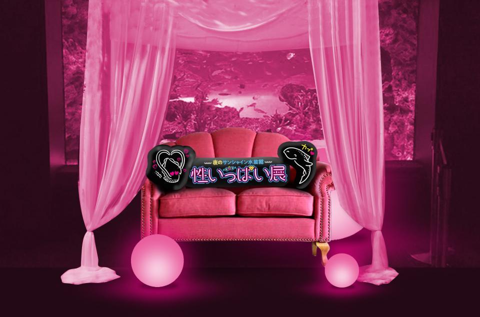 ムーディーなお部屋の世界観を表現したというピンクのソファー