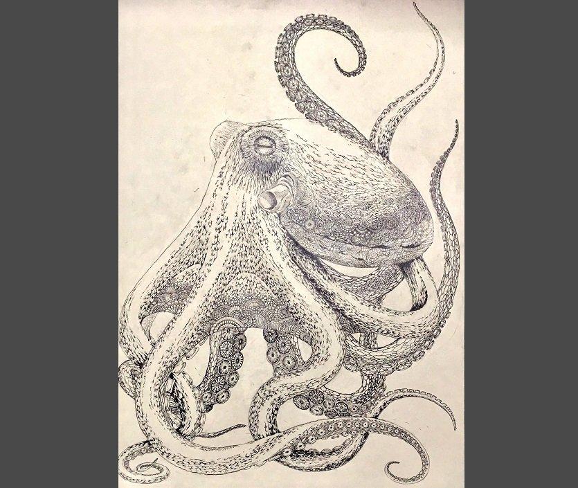 「海蛸子」の下書き(福田さんの公式ツイッターより)