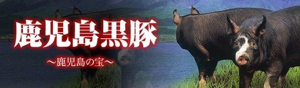 黒豚は鹿児島の宝だ(楽天市場内の「黒かつ亭」ページより)