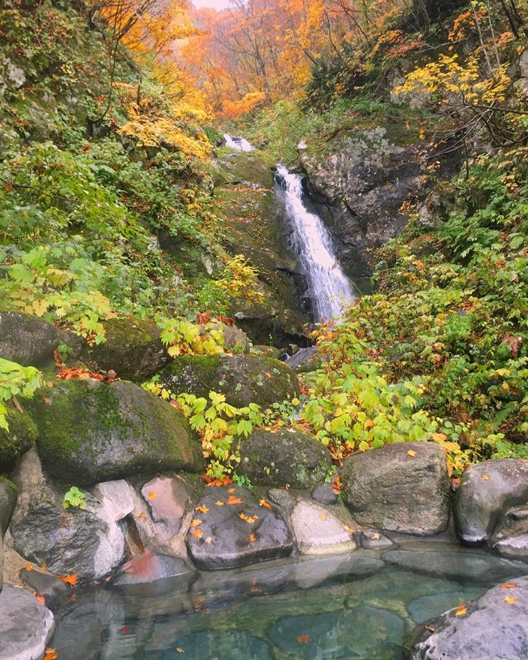 滝を見上げて入る滝見露天風呂