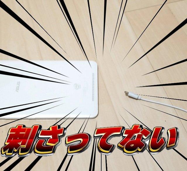 ここにいた(画像は精子す(@takusaniinesite)さんのツイートから、以下同)