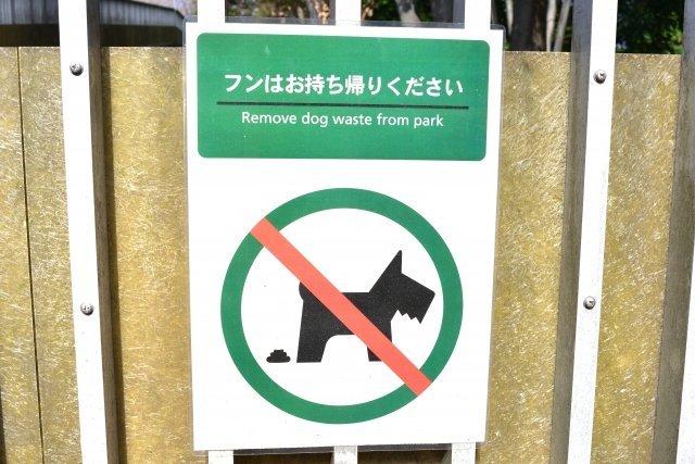 犬の糞に悩まされる日々にストレスが...(画像はイメージ)