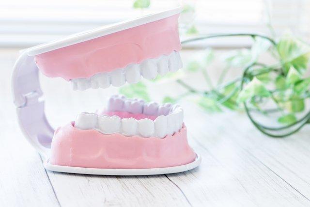 歯の接触で身体に影響が