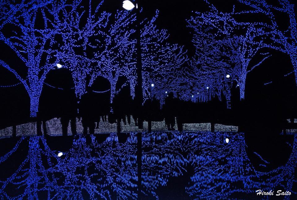 イルミネーションイベント「青の洞窟」をモチーフにした「Merry Christmas」(斉藤洋樹さんの公式ツイッターより)