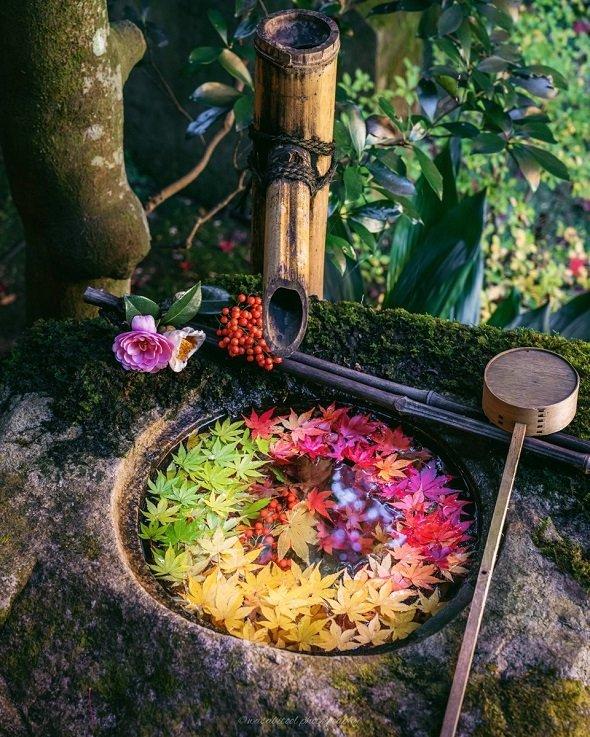 柳谷観音、紅葉の手水鉢。 wasabitool (@wasabitool)さんのツイートより
