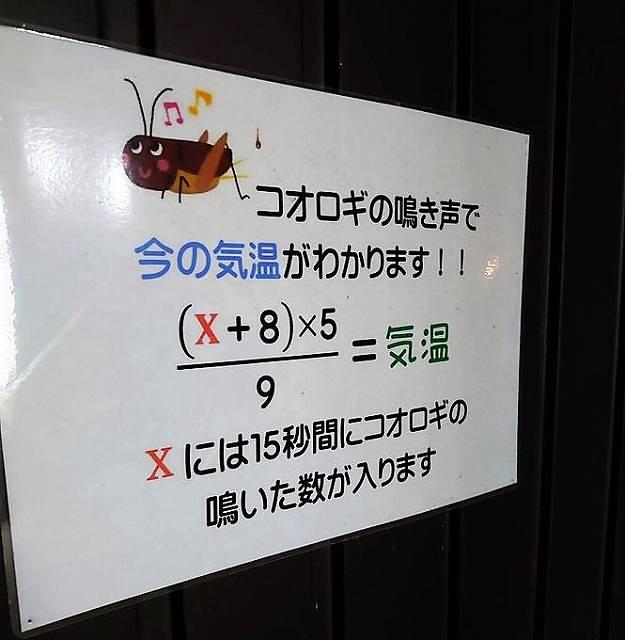 本当に!?(画像はKosuke Sawa@kosukesaさん提供)