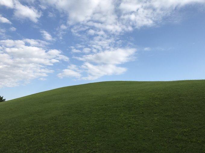 草原...?(画像はヤマキ@Yamaki_82さん提供)