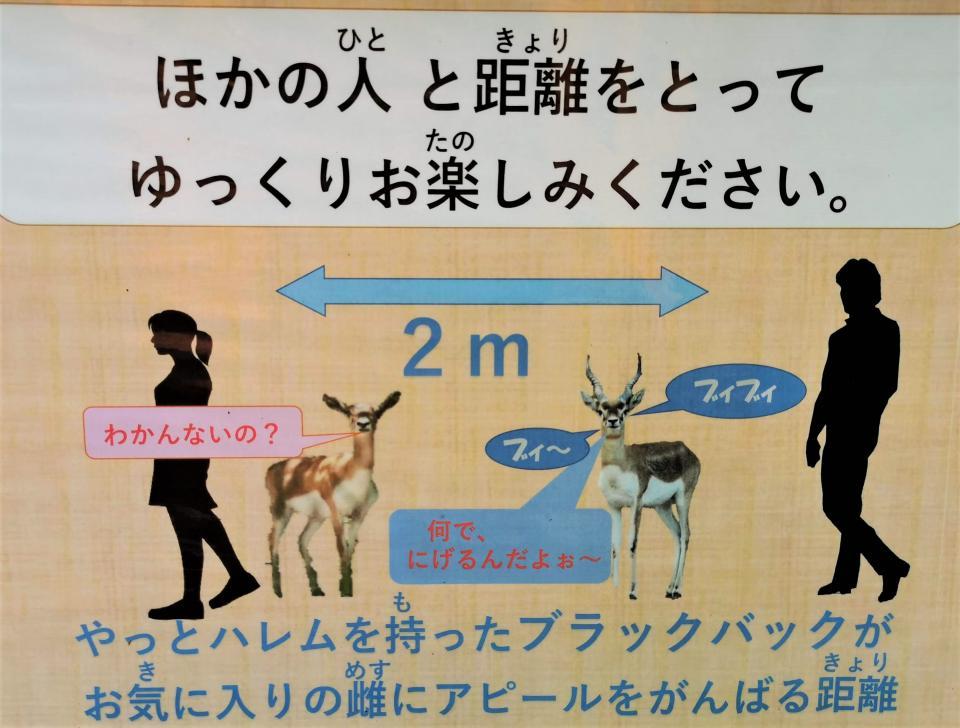 2メートルなのか...(画像は広島市安佐動物公園提供)