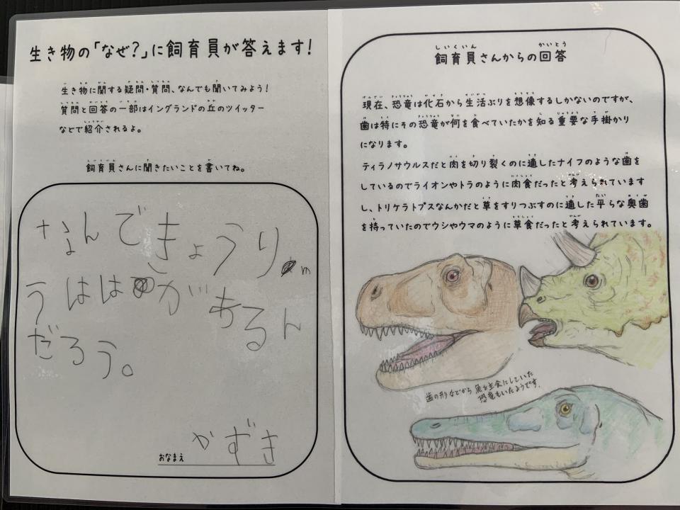 恐竜は後藤さんの趣味だそう(画像はイングランドの丘提供)