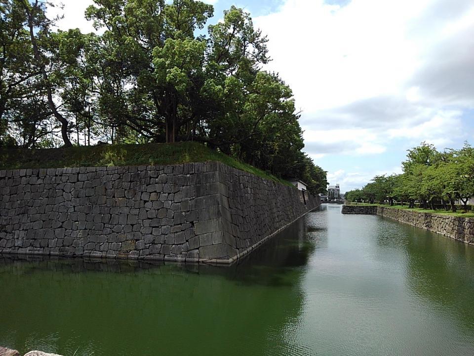普段の堀の様子(画像は永太郎@Naga_Kyotoさん提供)