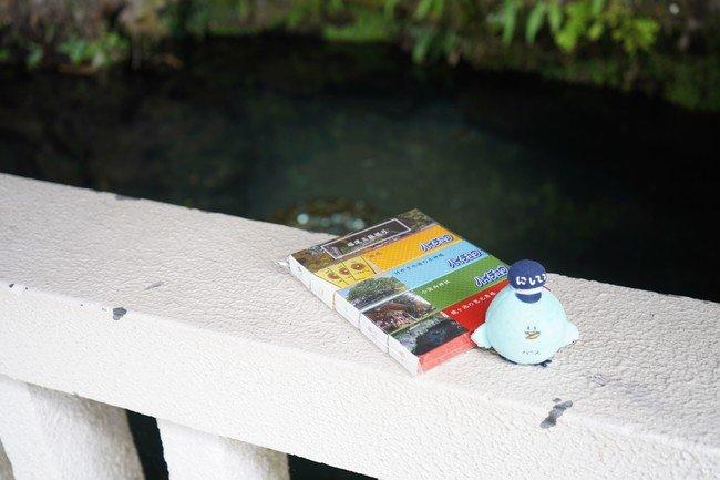 ハイチュウには開運スポットとして人気の小国「福運三社めぐり」の情報が