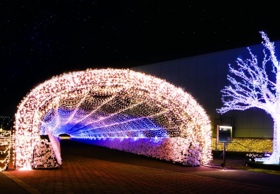 タイムトラベルエリアにある長さ100メートルの「江戸桜トンネル」