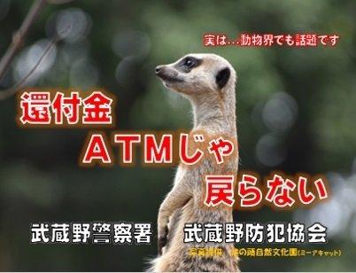 動物界でも特殊詐欺が横行している......のか?
