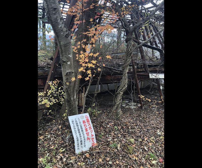 ボロボロの廃墟と紅葉......と謎の看板