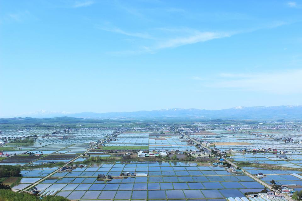 水を張り鏡のように空を映す田植え時期の「鏡面水田」(写真提供:東川町)
